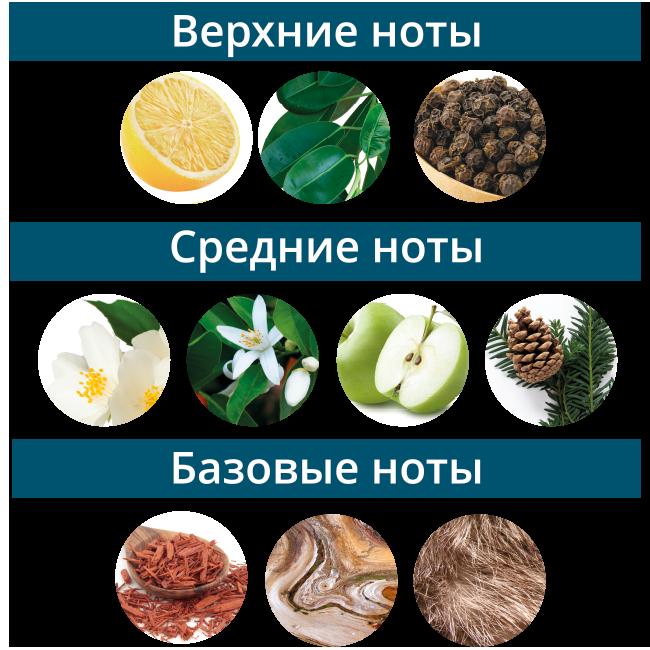 Ноты_-Александрит.png