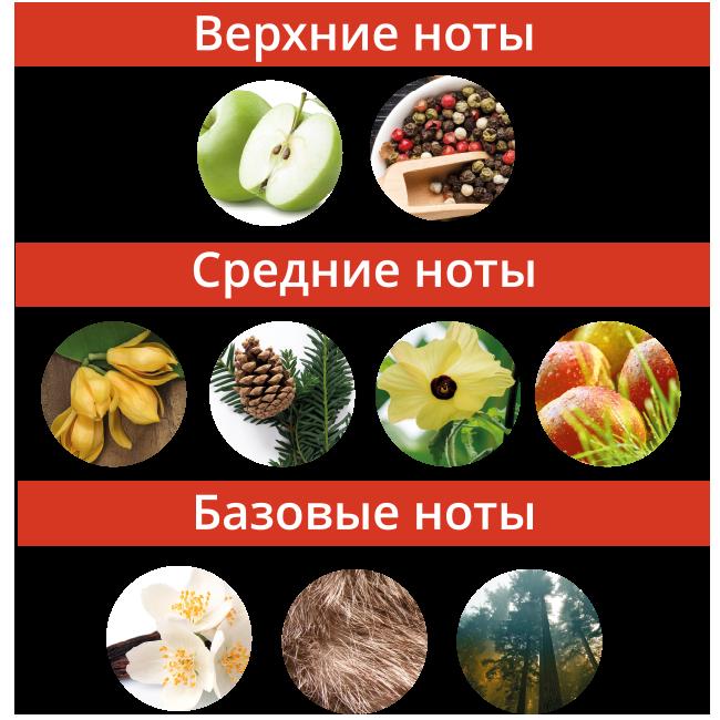 Ноты_Авантюрин.png