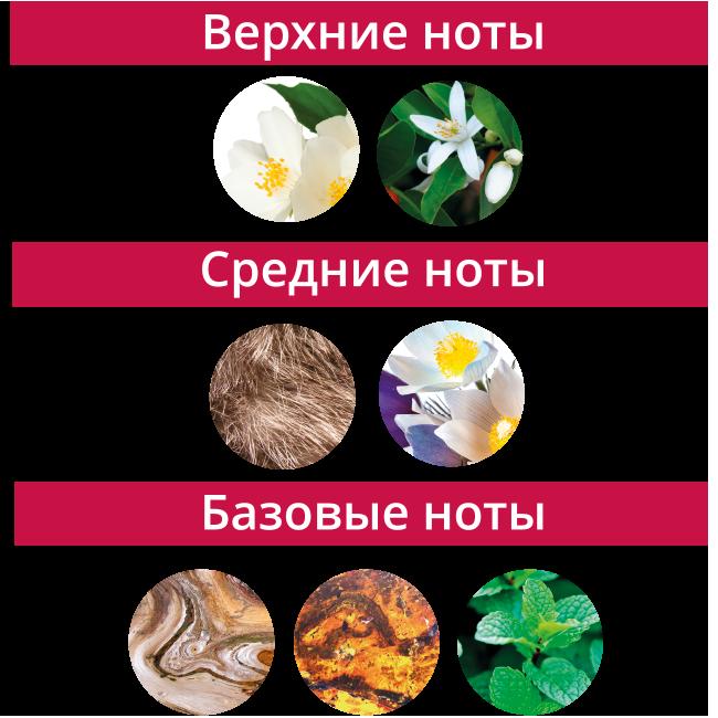 Ноты_Турмалин.png